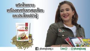 พริกไทยขาว - พริกไทยเม็ดขาว - พริกไทยเม็ด - พริกไทย - พริกไทยขาวราคา - สอบถามเพิ่มเติม