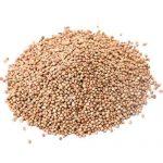 พะโล้ผง - ผงพะโล้- พะโล้ - เม็ดผักชี - เครื่องเทศ - สมุนไพร - Coriander Seed