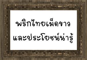 พริกไทยเม็ดขาว - ประโยชน์น่ารู้