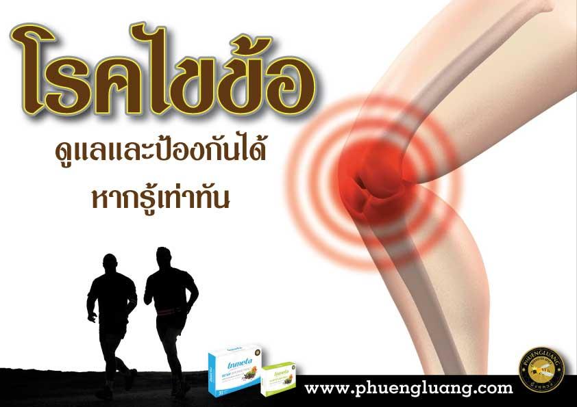โรคไขข้อ - arthritis - สุขภาพ